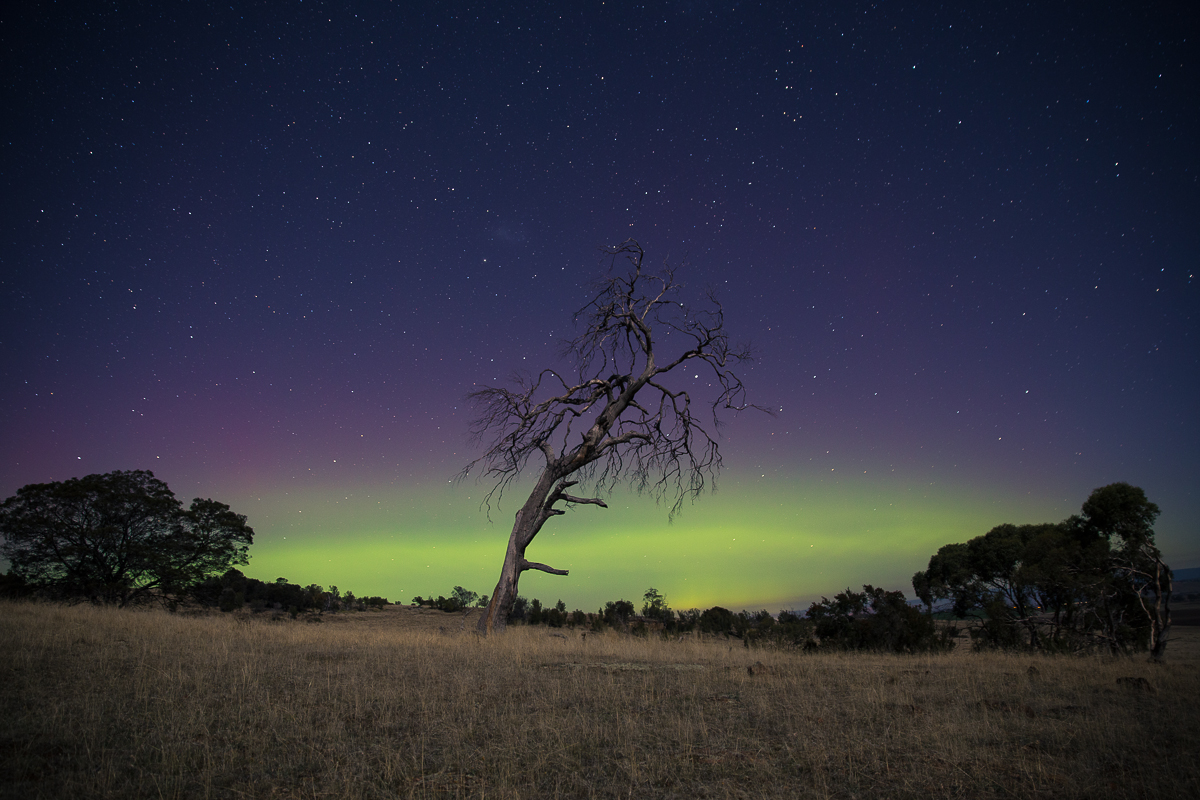 Aurora Australis, as seen in the Tasmanian midlands, Autumn 2014.
