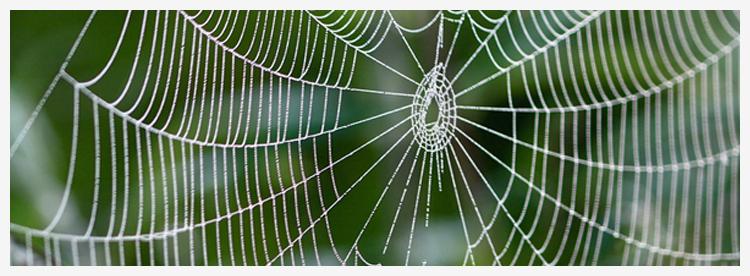 web-writing.jpg