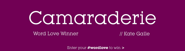 word-love-camaraderie