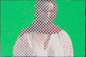Vanessa Hodgkinson: P R E I M A G E Peninsula Art Space, Brooklyn, NY 10 January - 9 February 2014