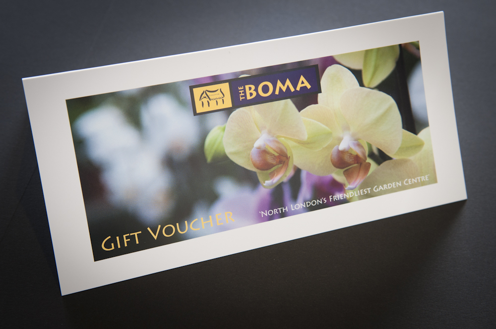 Gift Vouchers and Loyalty Scheme