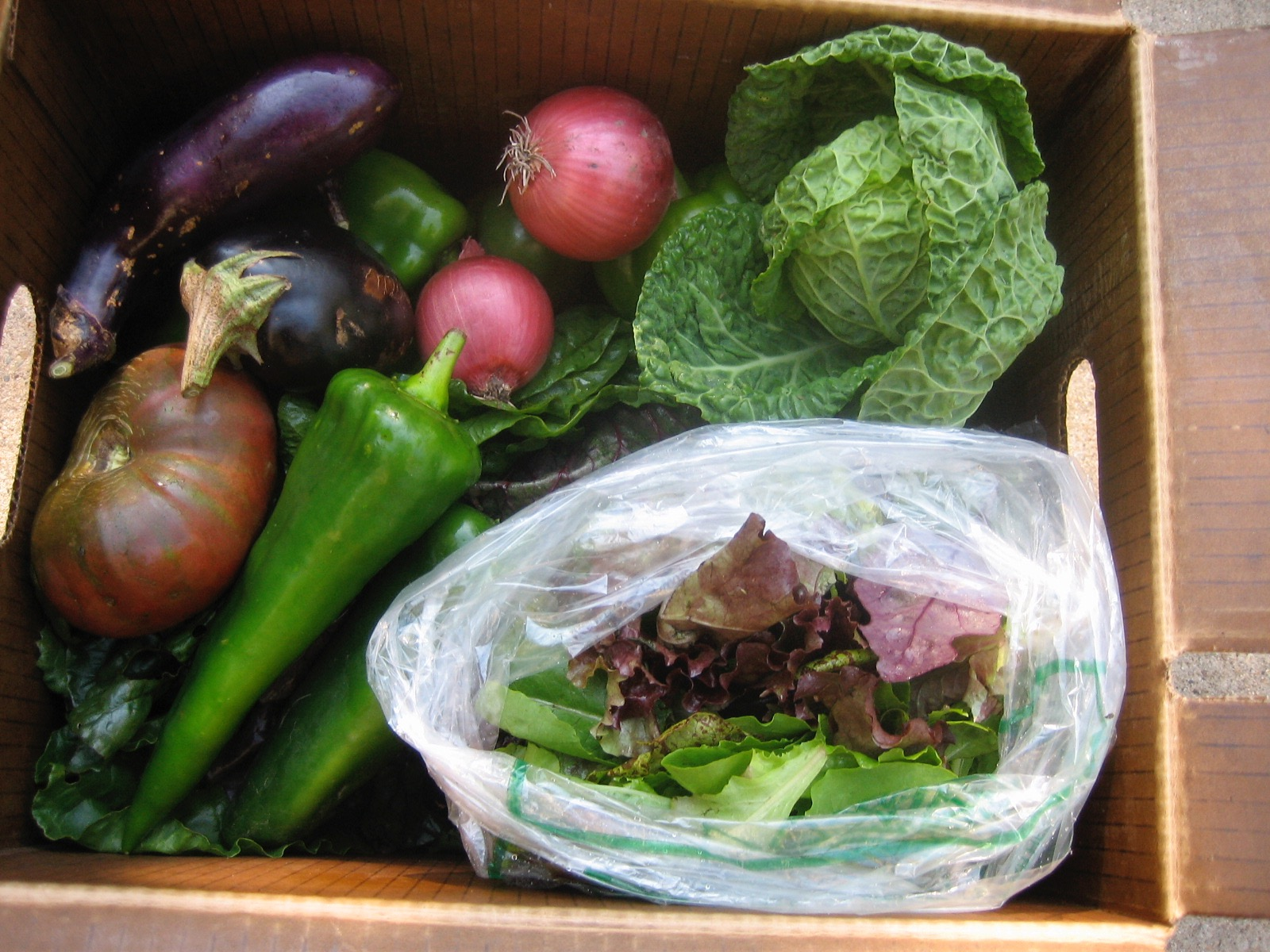 Late season CSA share box