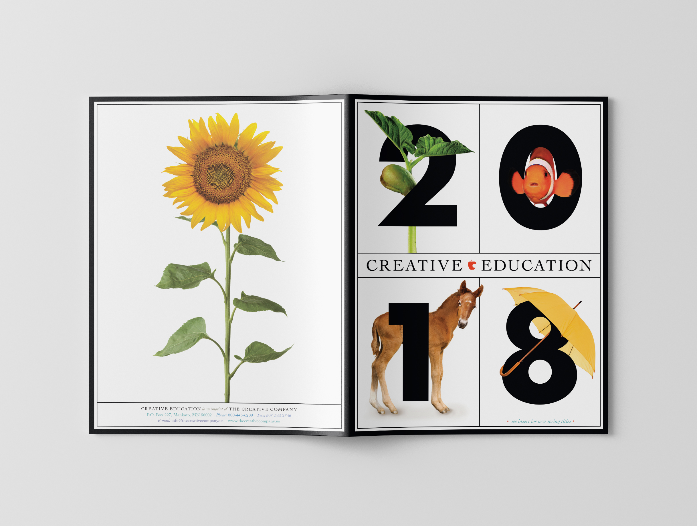 CVanderbeek_Creative Education Catalog 2.jpg