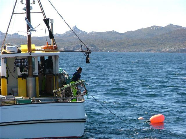 Fishing Vessel 'Legacy' Skippered by Steven Leask of Bluff, NZ. Coming alongside a Blue Cod trap to haul and replace bait.