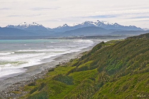 Te Wae Wae Bay in Southland. An area where many of the species we supply fresh chilled come from.