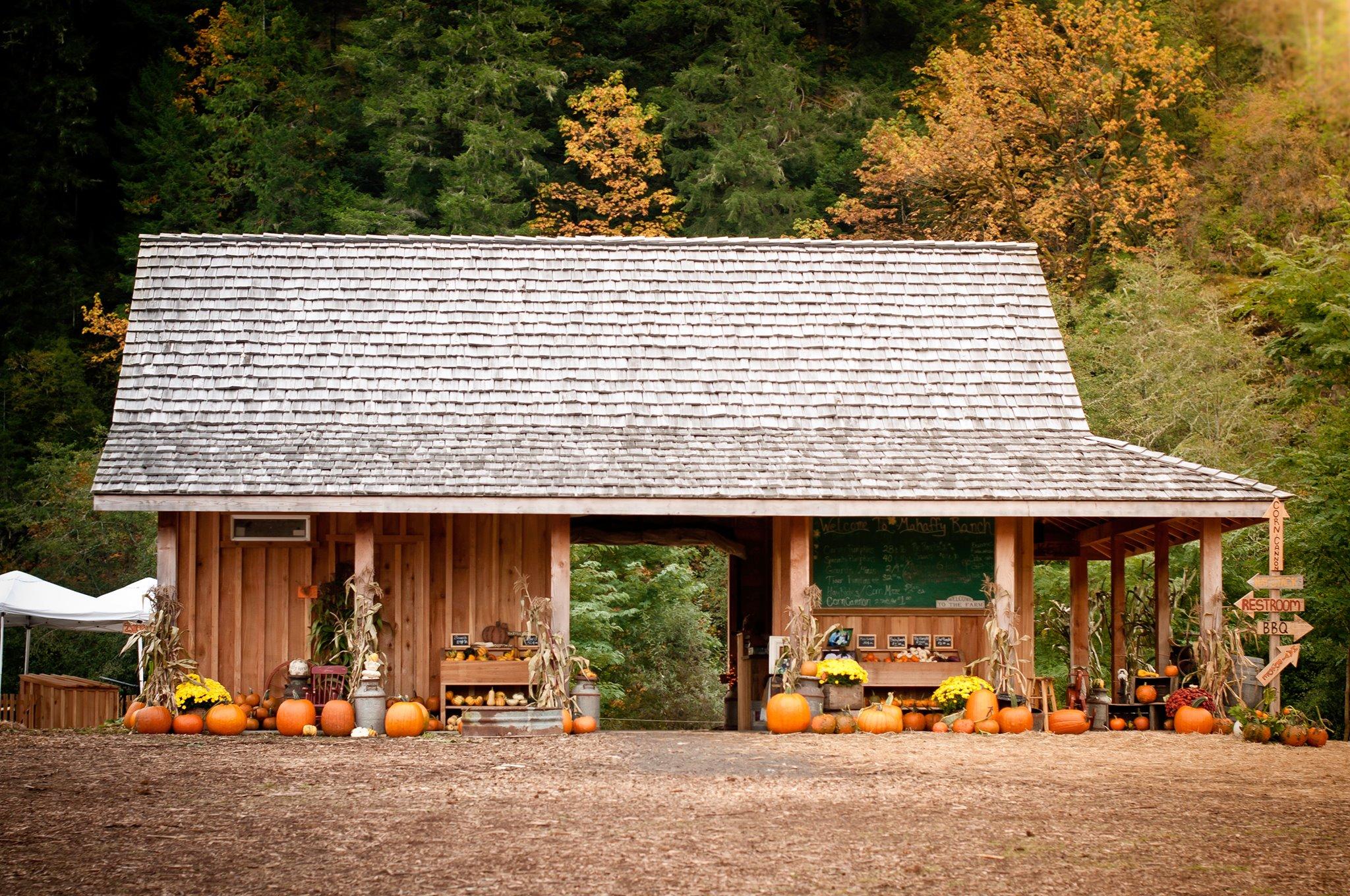 Pumpkin Patch Building.jpg