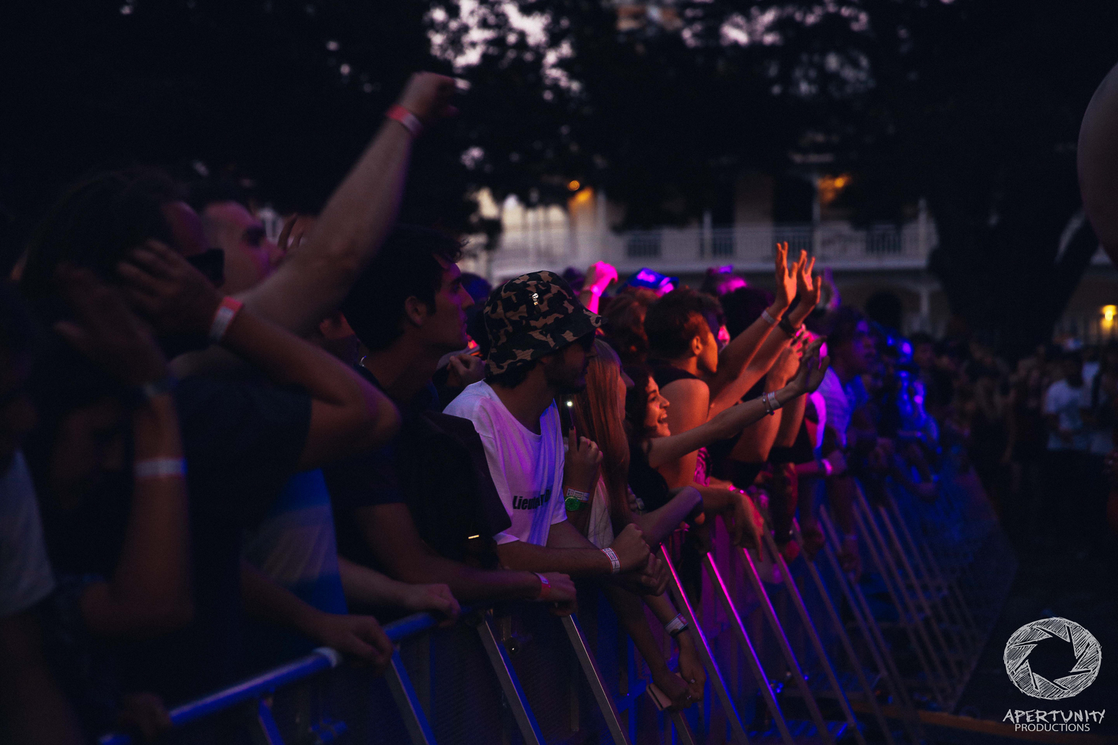 Laneway Festival -52.jpg