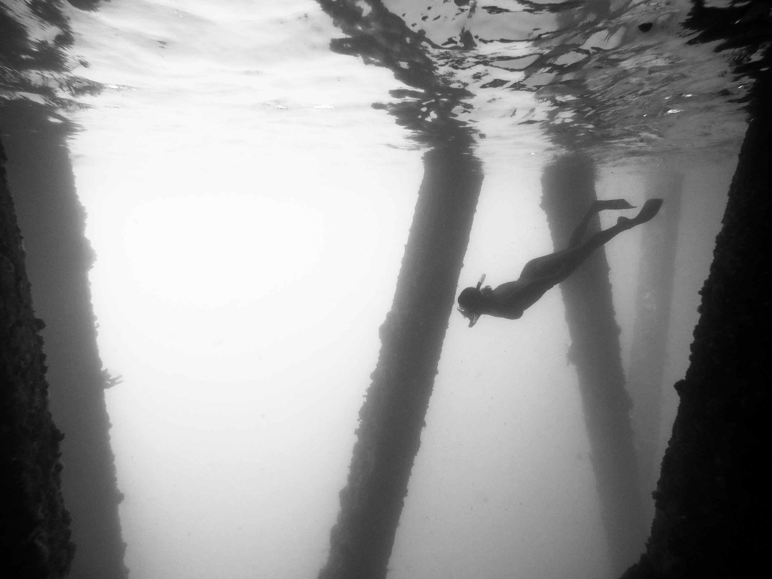 Puerto Rico Snorkle - Devin Feil