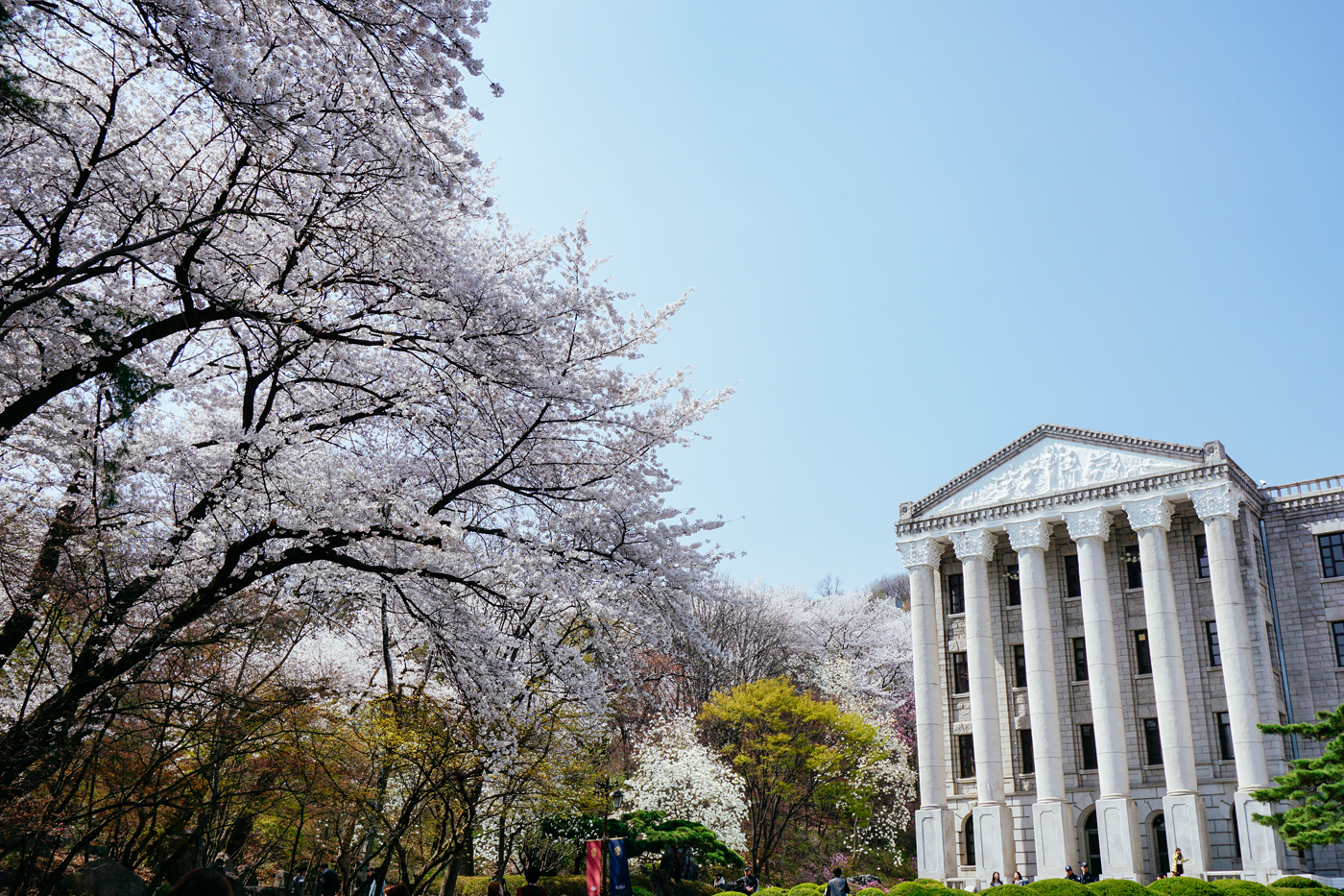 Spring in Seoul: Kyunghee University (경희대학교) in Seoul, South Korea.