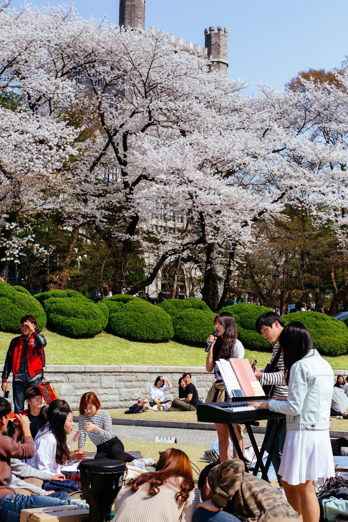 KyungHeeUniversity09.jpg