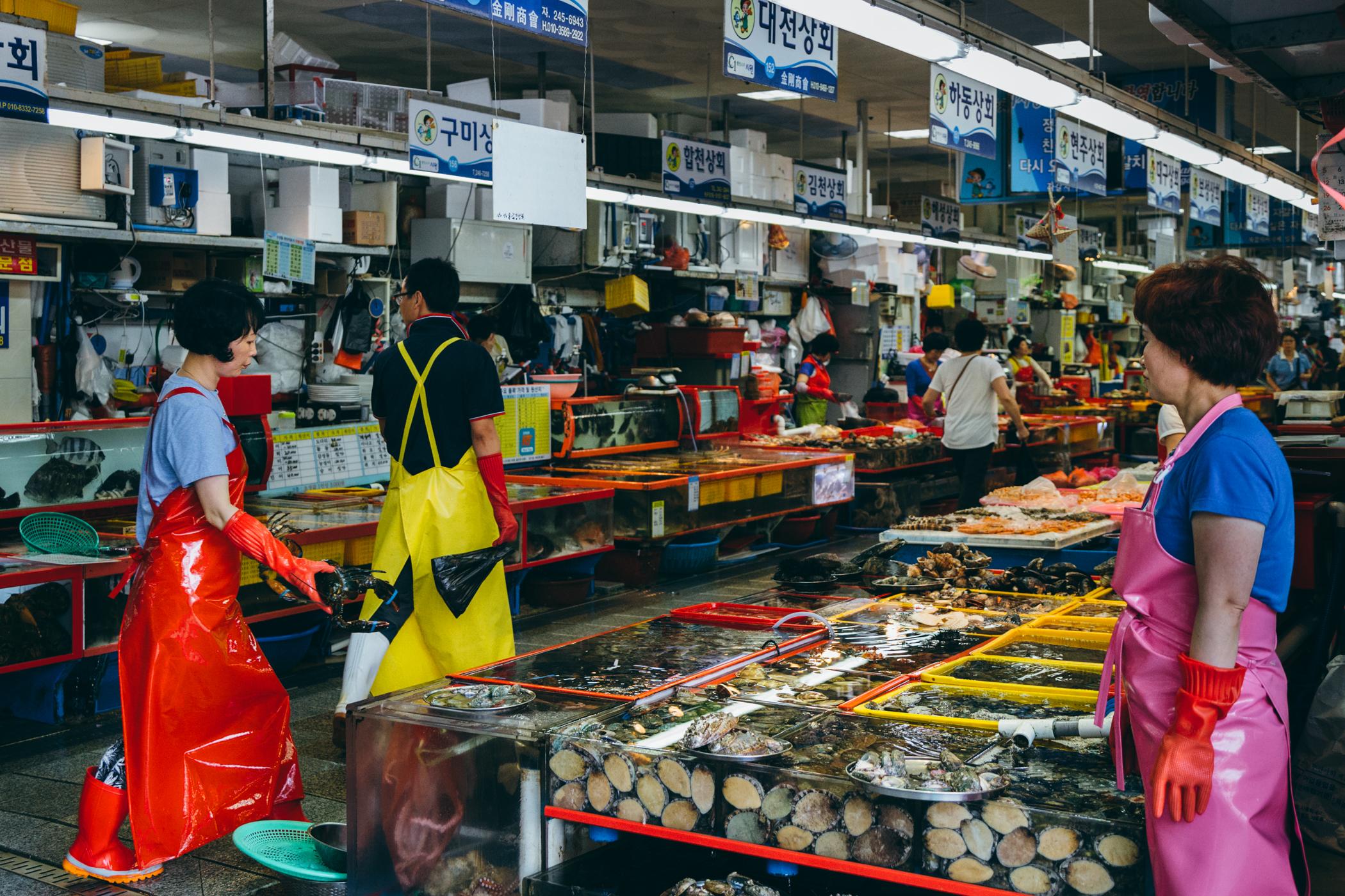 Greysuitcase Busan Series: Jagalchi Market (자갈치시장), Busan (부산), South Korea.