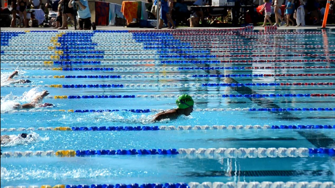 Pic 1 swim St Cyril.jpg