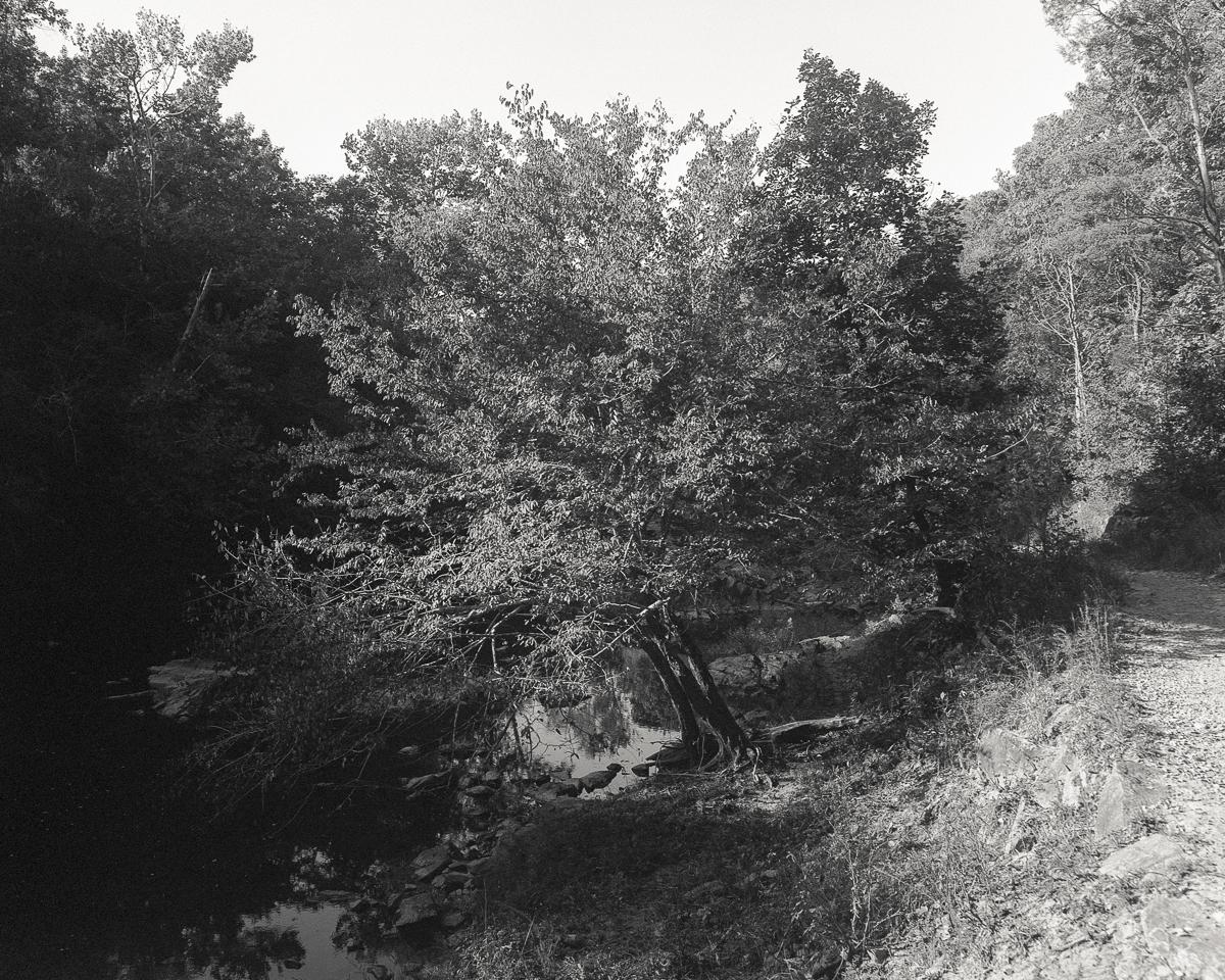 river-01-Web.jpg
