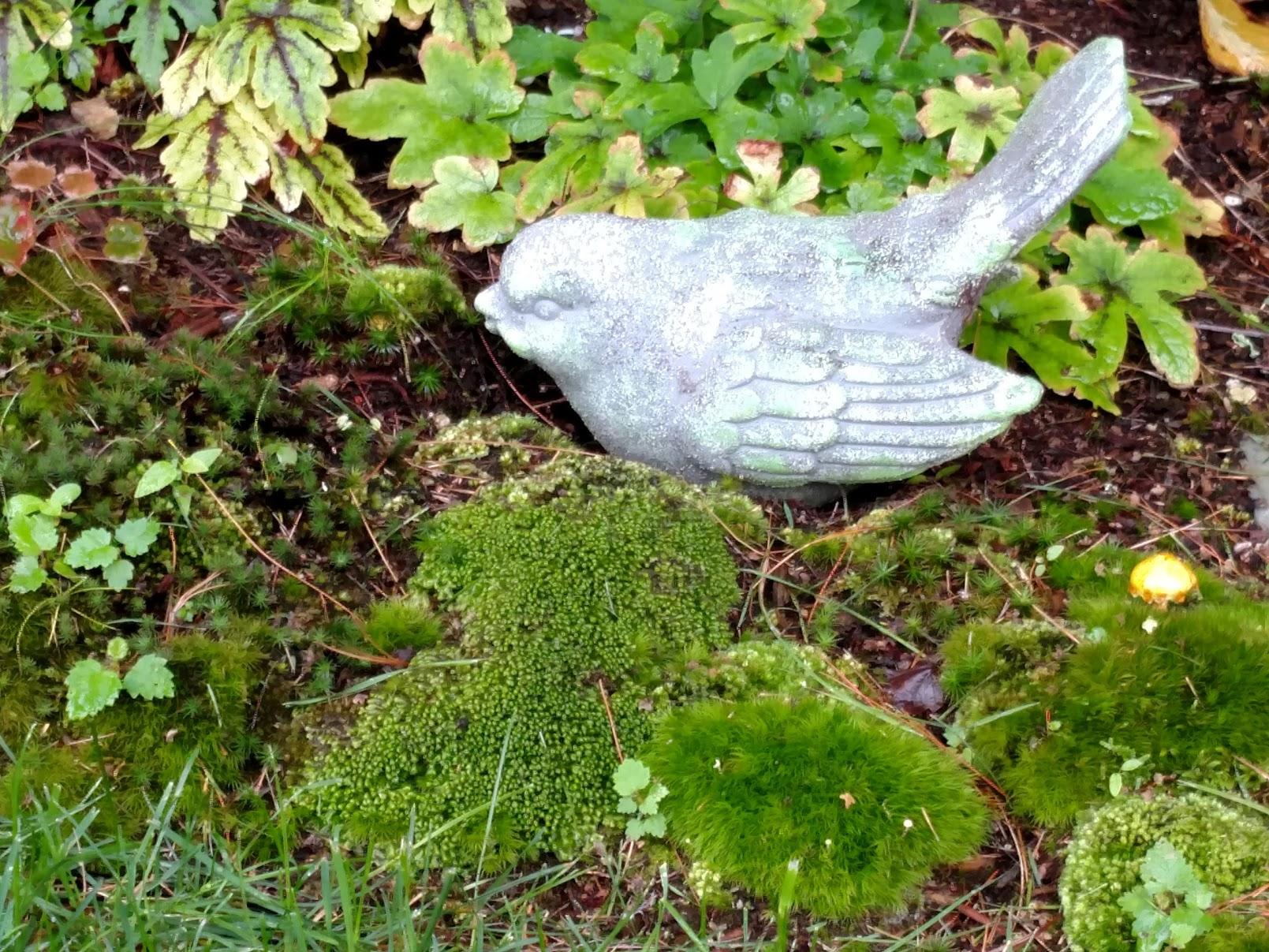 Moss with bird
