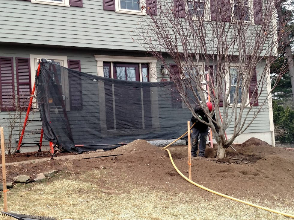 Rhododendrons on either side of front stairs have been removed. Air spading Japanese Maple begins.