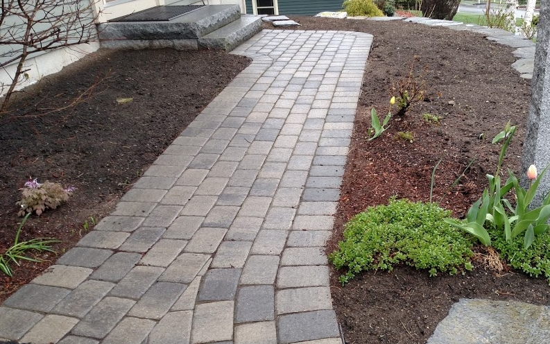 Pavers replaced to their original location. Planting challenge: Full shade on left - full sun on right!