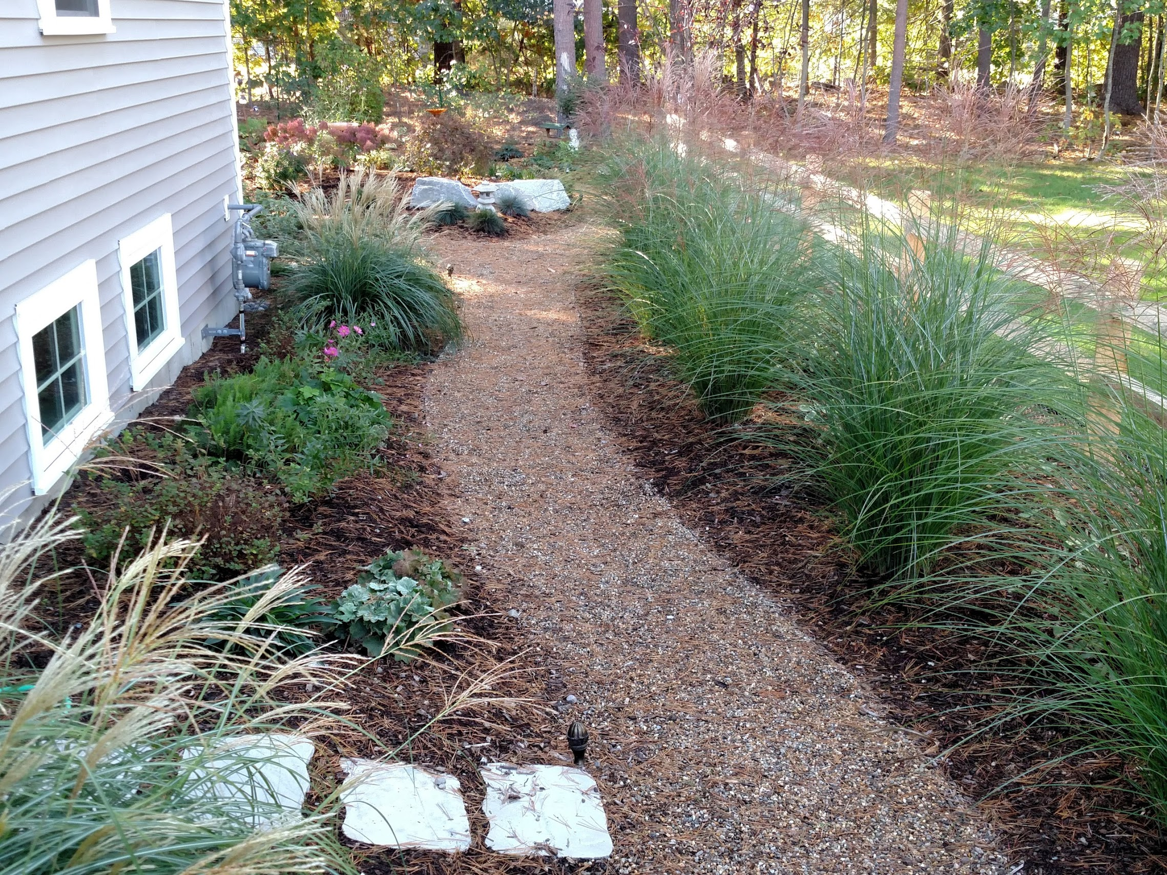 Grasses help to establish property line and soften the new split-rail fence.