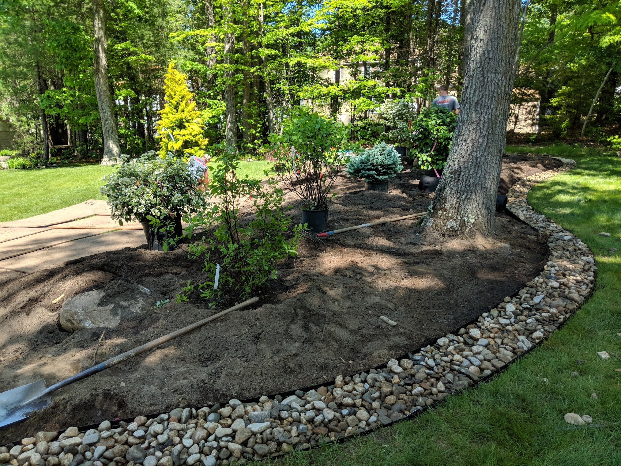 Plants are laid out according to our plan. River stone is in place and looks amazing.