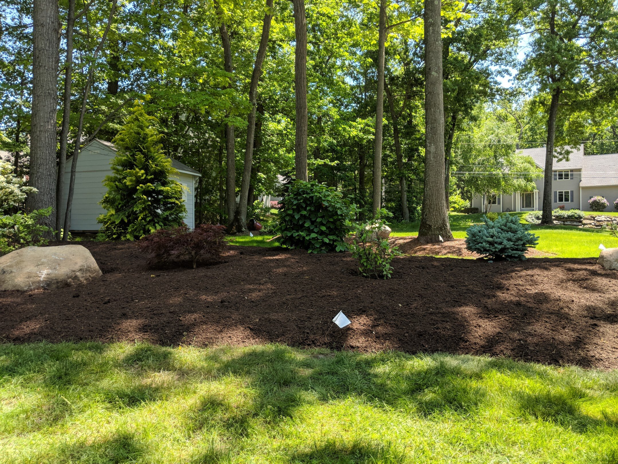 Nutri-mulch is down and everything looks neat and crisp.
