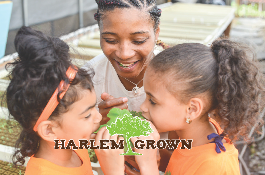 - INSPIRING…Community Trust & UnityCHALLENGE How can we create awareness and a larger community engagement with Harlem Grown?INSIGHT People don't fully understand just how many ways Harlem Grown grows not only the garden but the community.SOLUTION We want Harlem Grown to launch and sustain a video/story driven campaign.