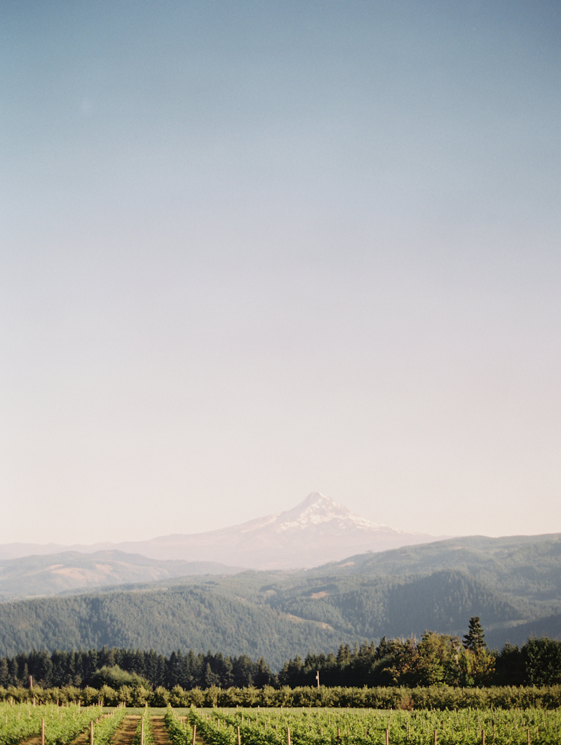 Linnea-Paulina-Film-Wedding-Photographer-Mt-Hood-Gorge-Crest-001.jpg