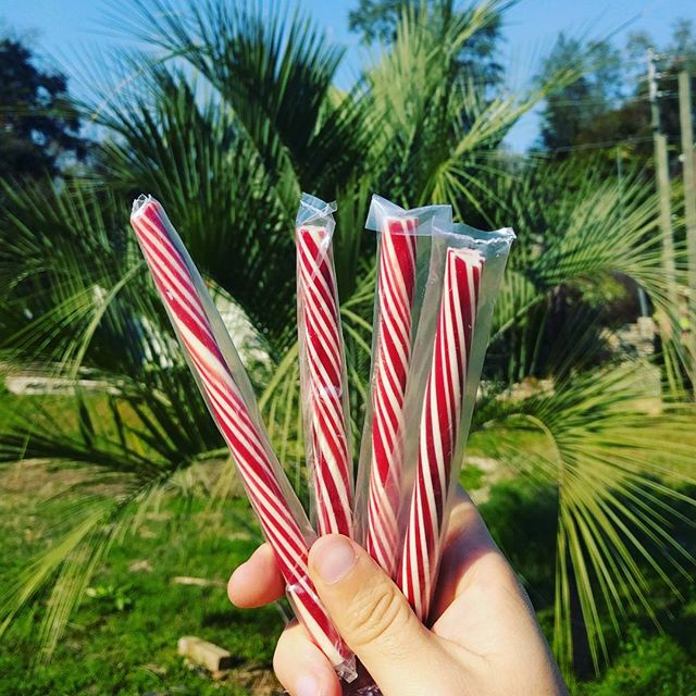 We've got extra candy sticks! While supplies last we'll be throwing them into any retail orders placed, for free! You can find the link to our store in our profile  #raleysconfectionary #handmadecandy #handmade literal #freecandy