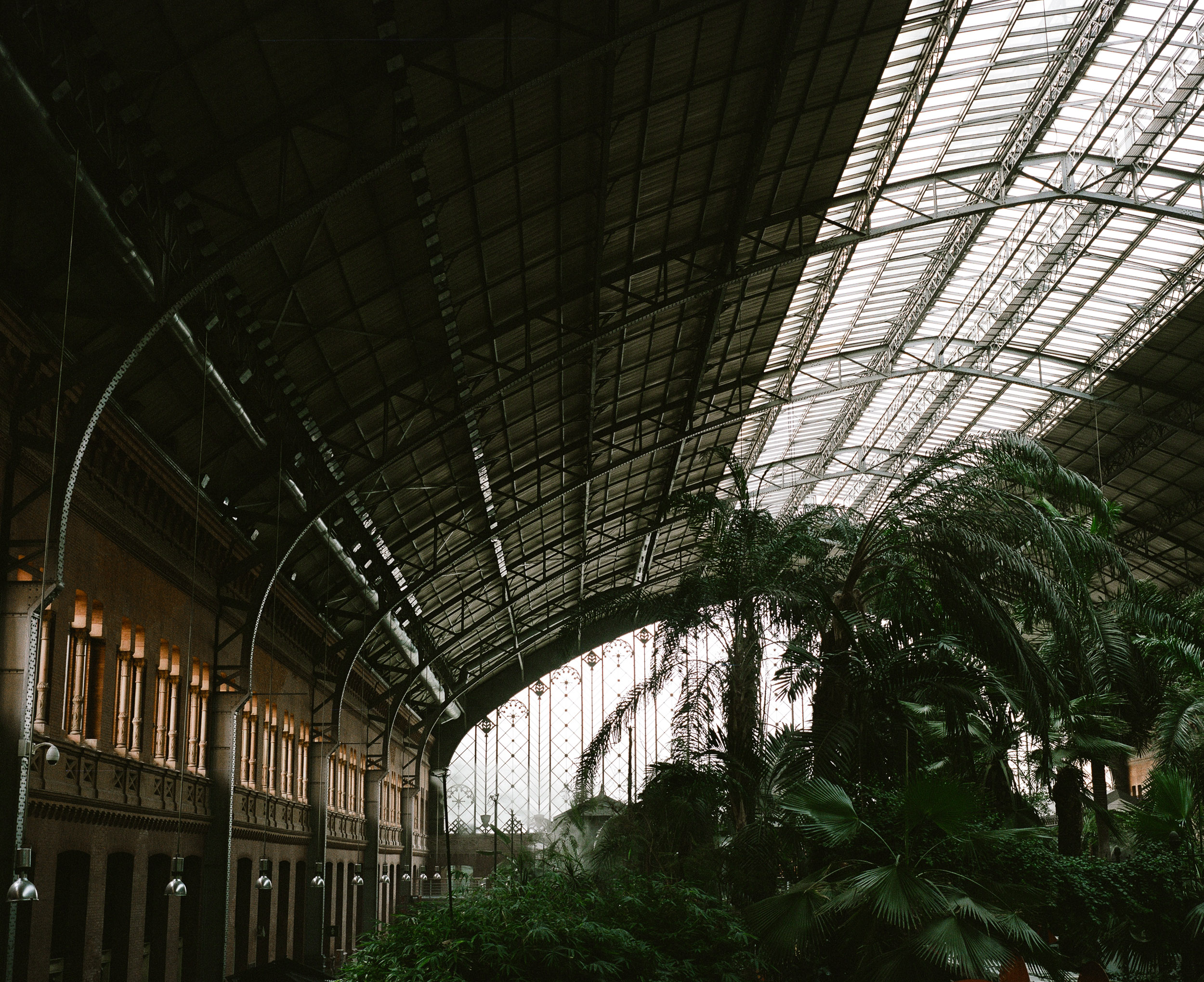 Train Station in Madrid, Palm trees, Glass roof