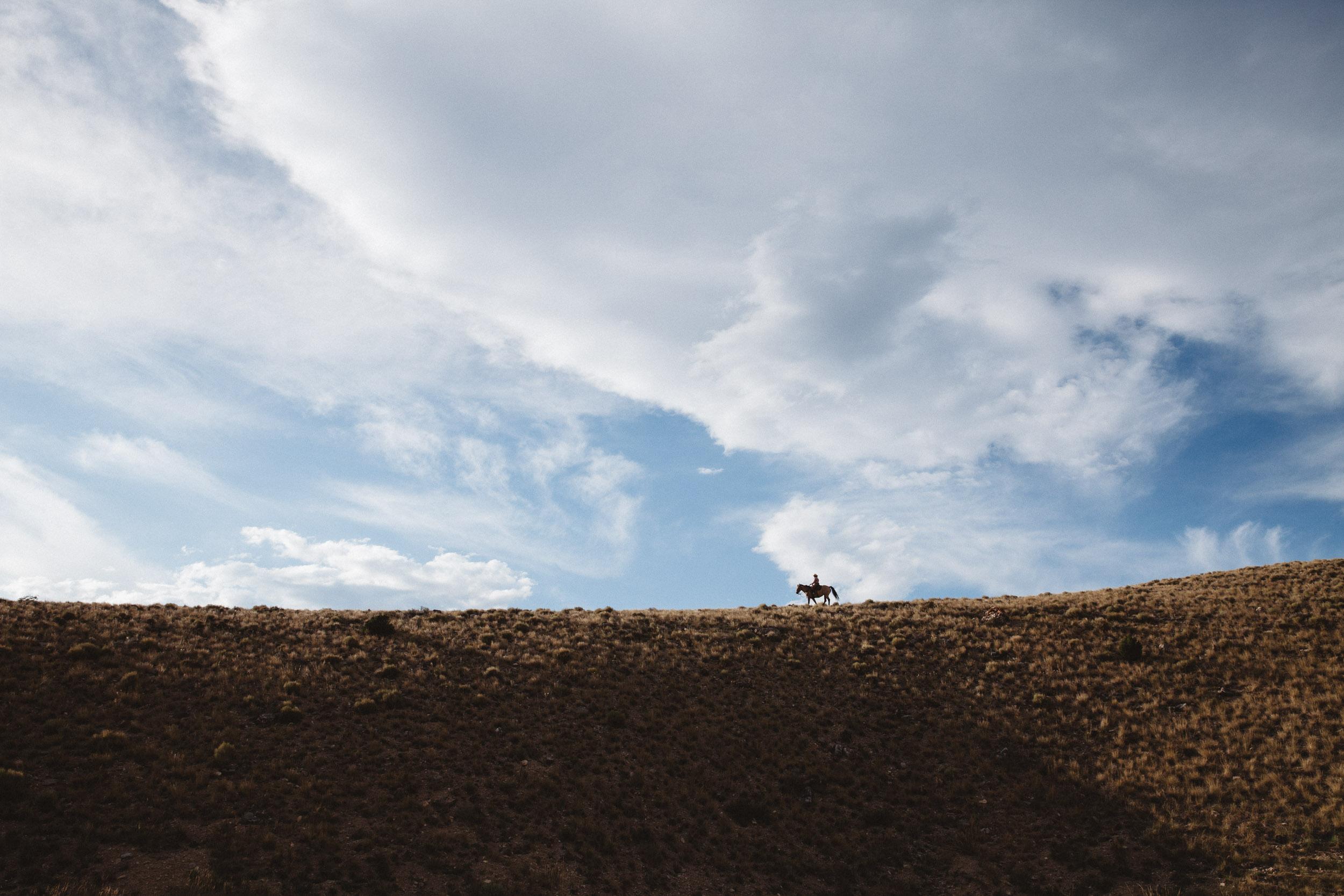 Horseback rider against the sky