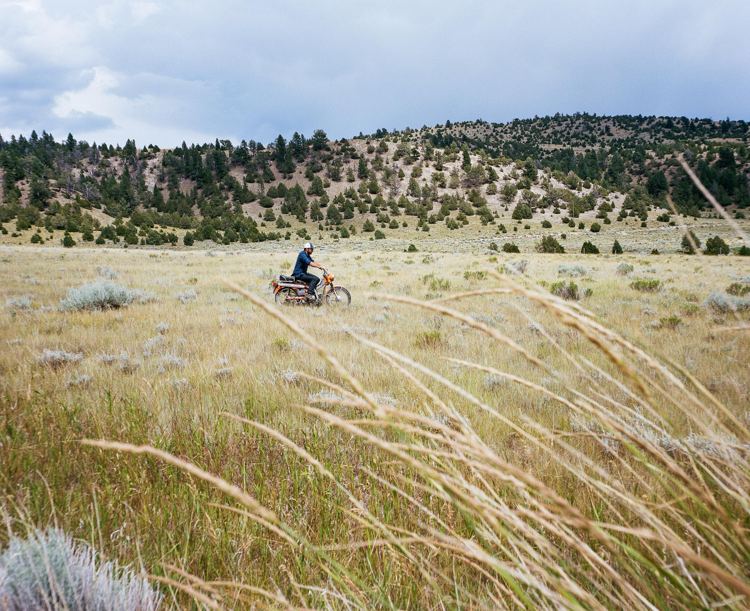 Motorcycle rider riding an orange trail 90 through the grass and sagebrush