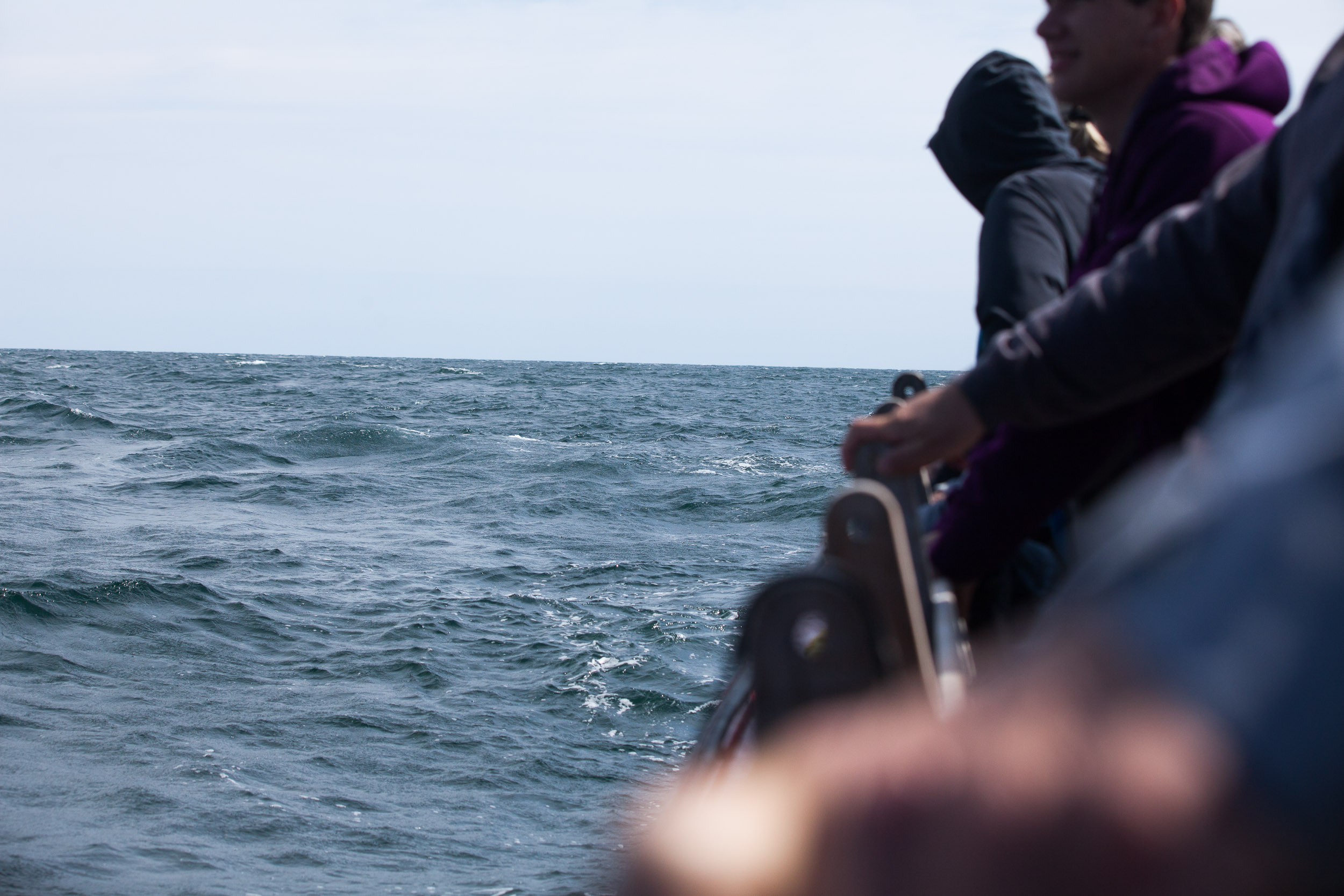 Whale watchers on the side of a boat looking into the ocean- travel photography cape breton nova scotia for re:porter magazine