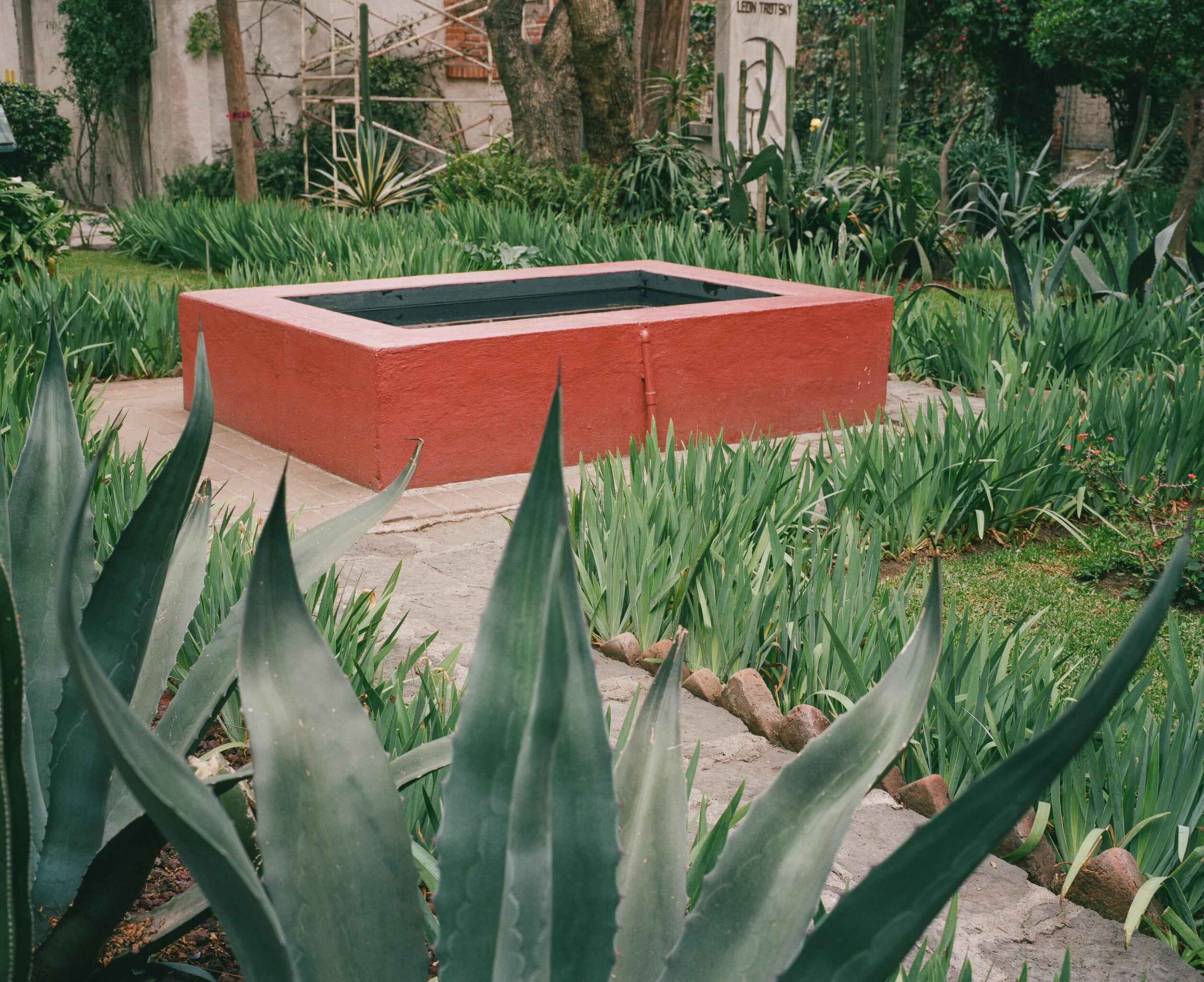 mexico_city_dAutremont_web_41.jpg