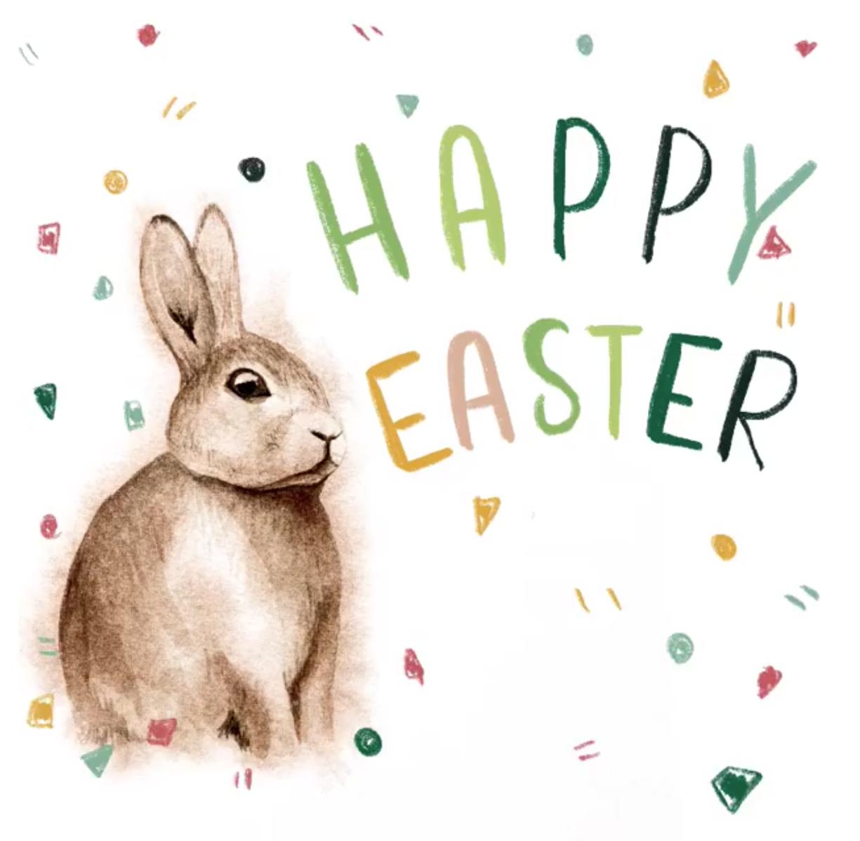 watercolour rabbit .png