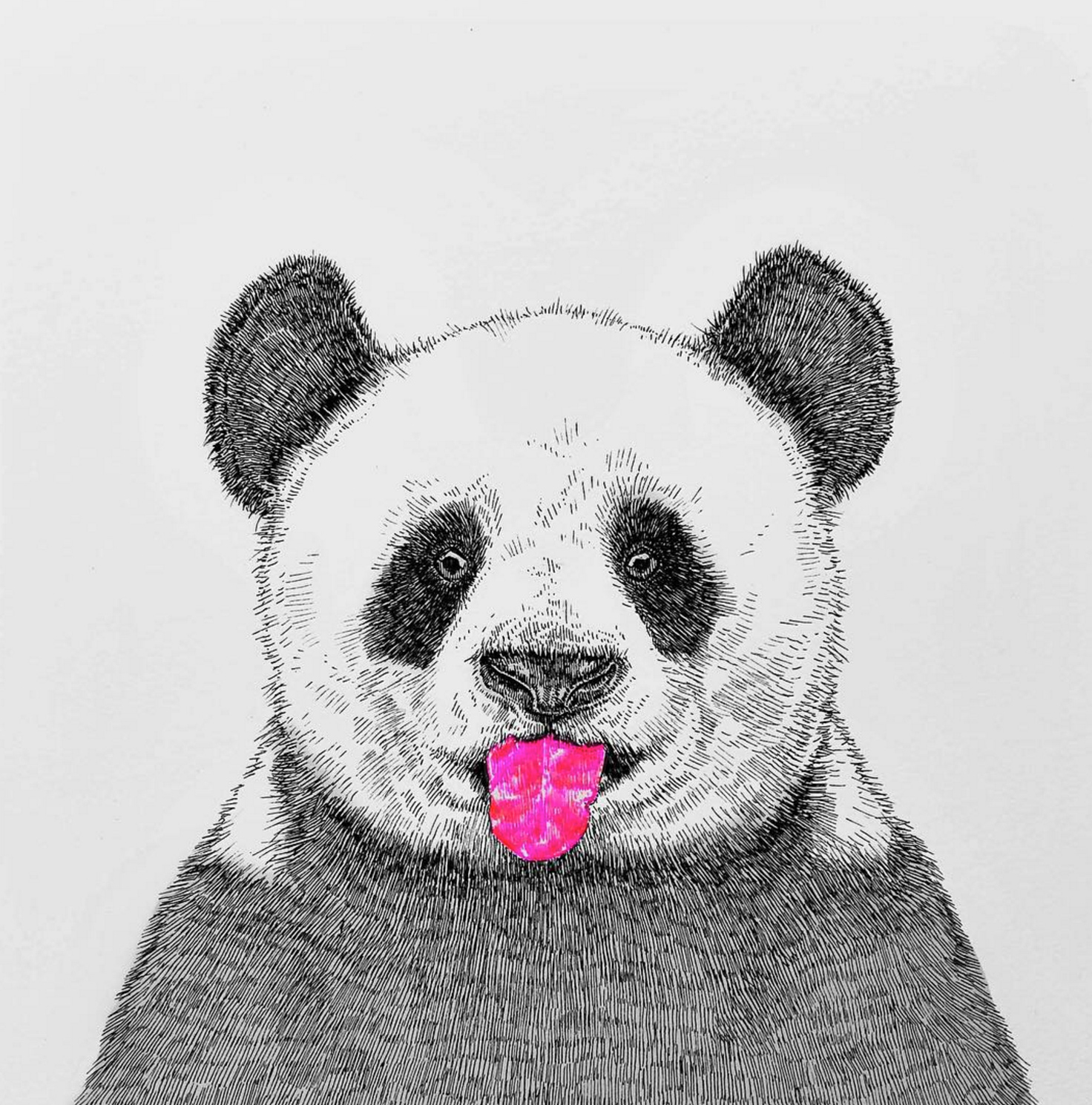 NikiPilkington_Panda.jpg