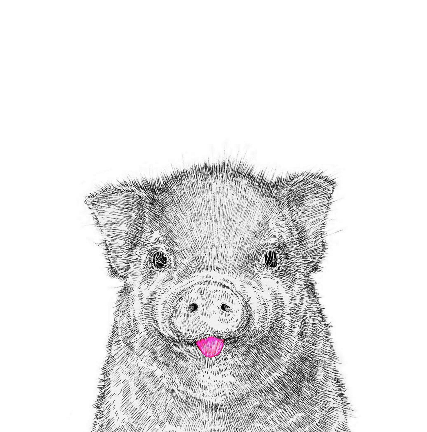 NikiPilkington_Pig.jpg