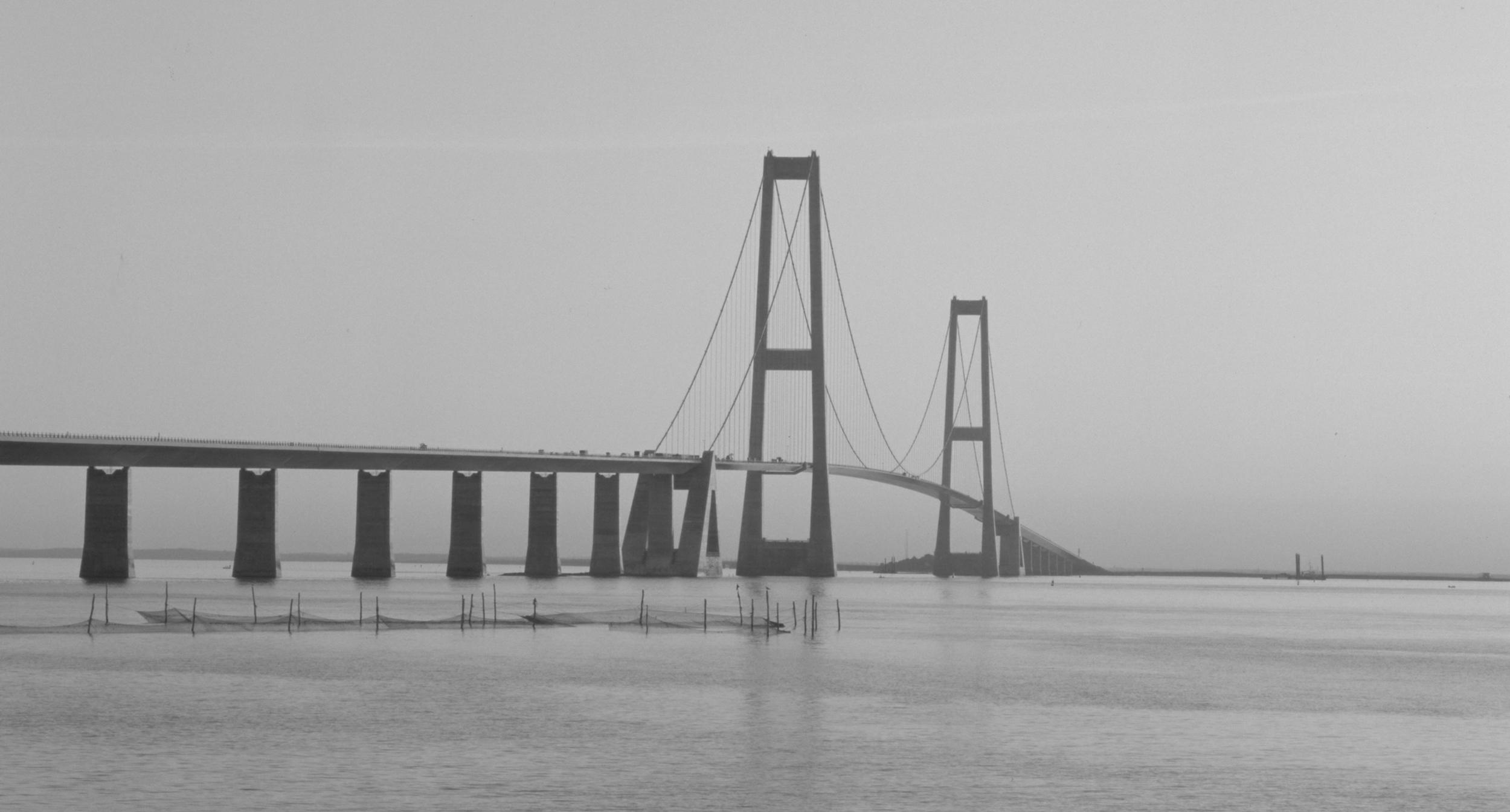 FIP Award for Outstanding Structures, Fédération Internationale de la Précontrainte 1998   For the  Great Belt Link's  east bridge.