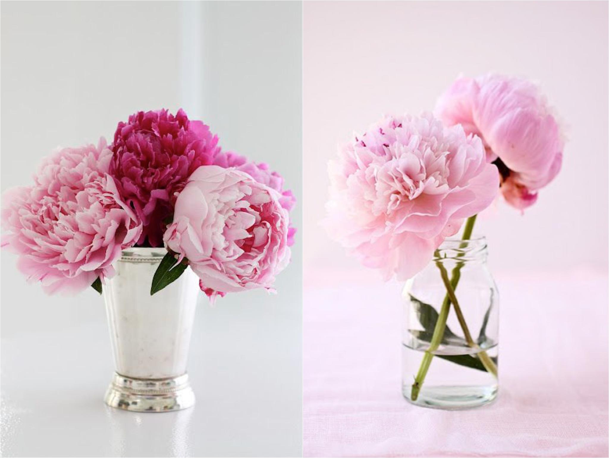 floral-favorites-inspiration-north-carolina-wedding-photographer-jaclyn-auletta-photography