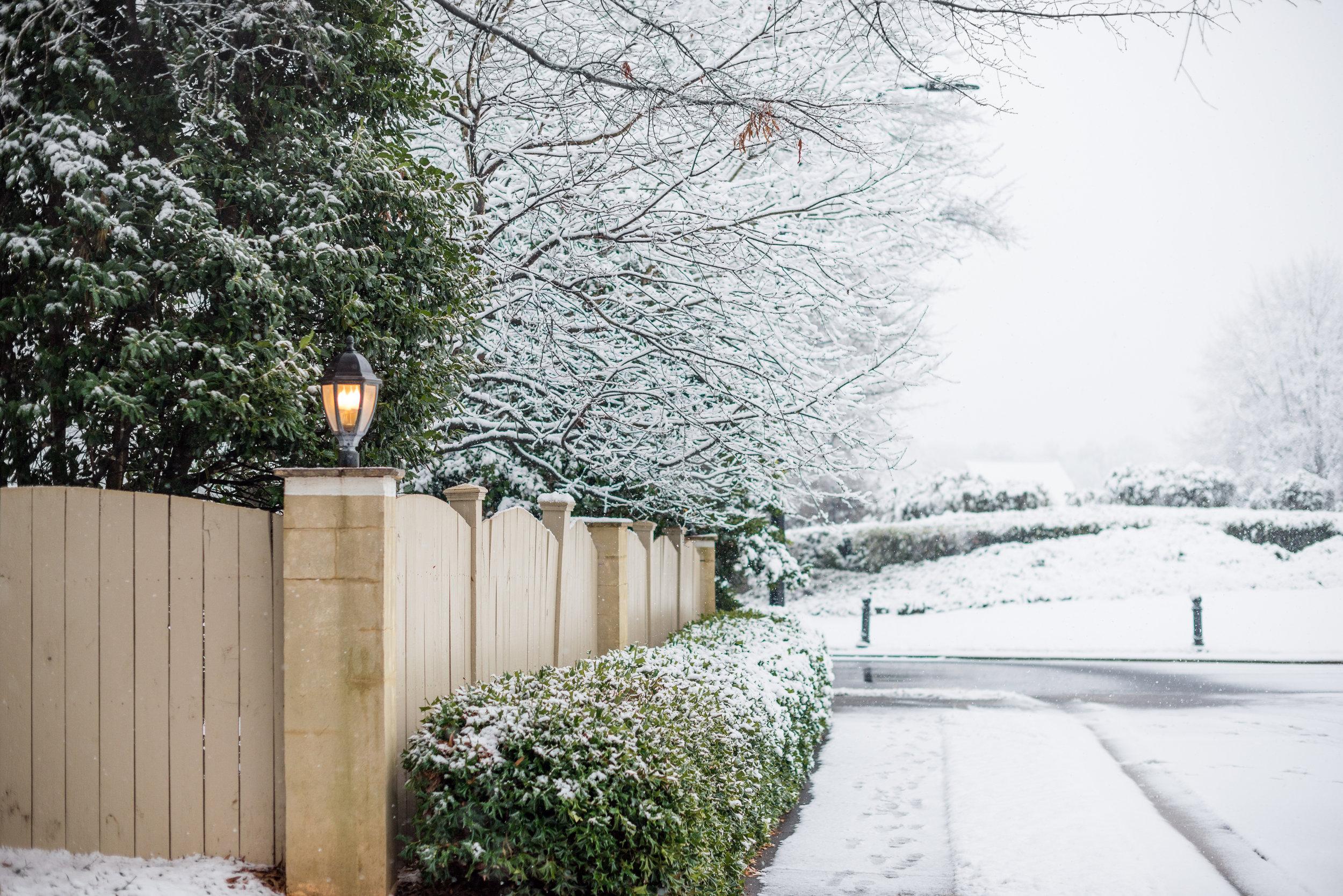 jaclyn-auletta-photography-winter-2018-4.jpg