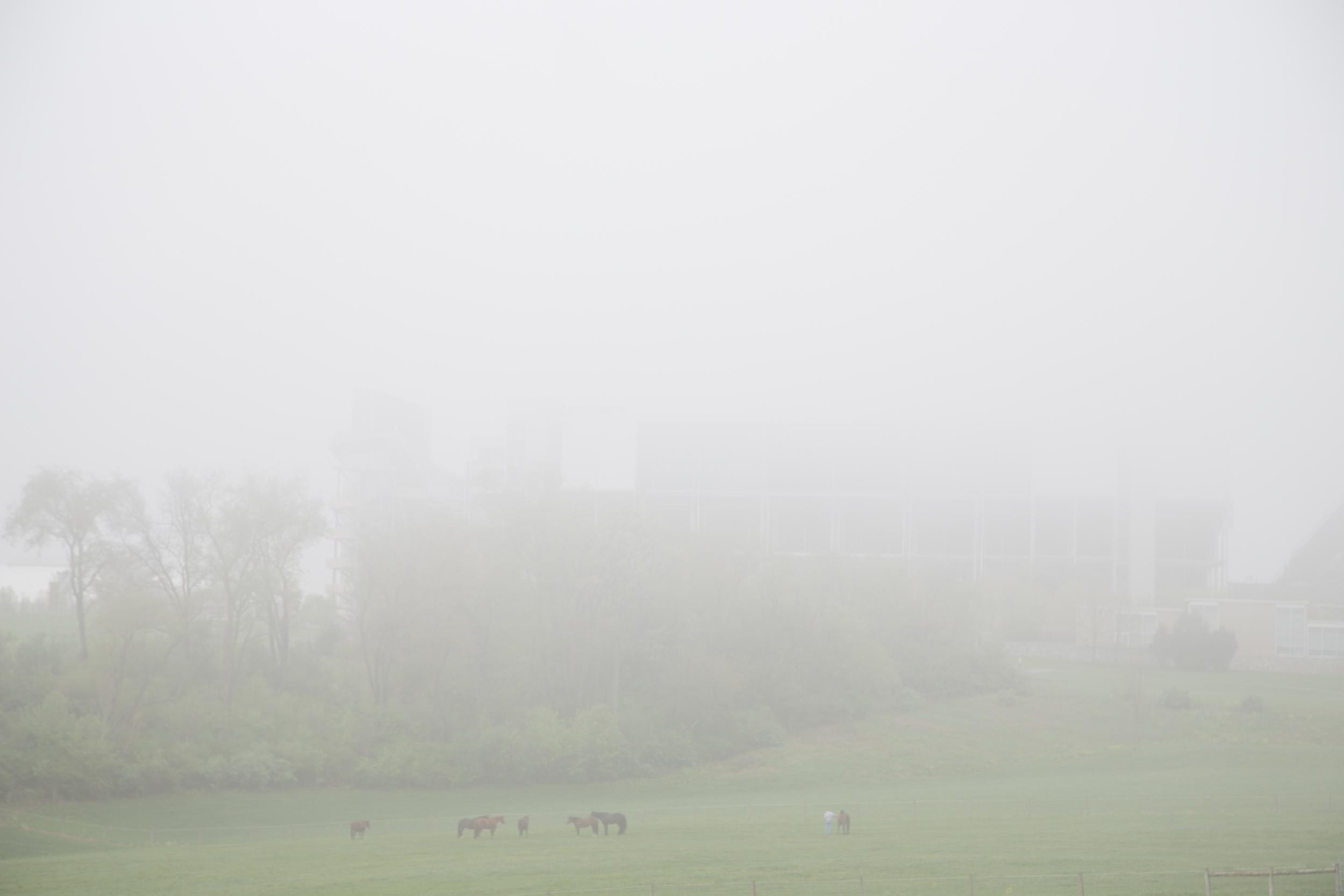 127 // 365 Foggy drive to work