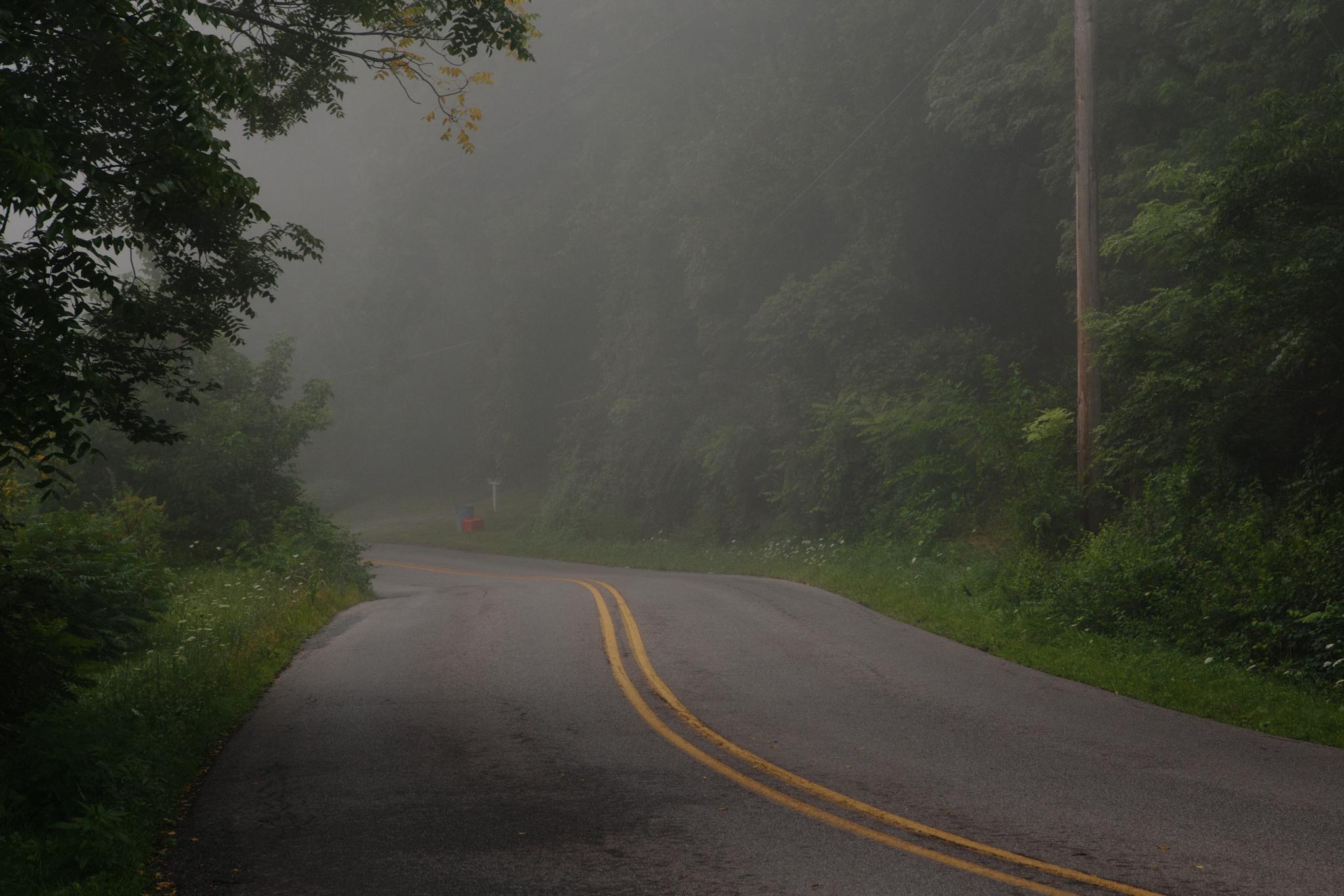 209 // 365 Foggy morning leaving the lane