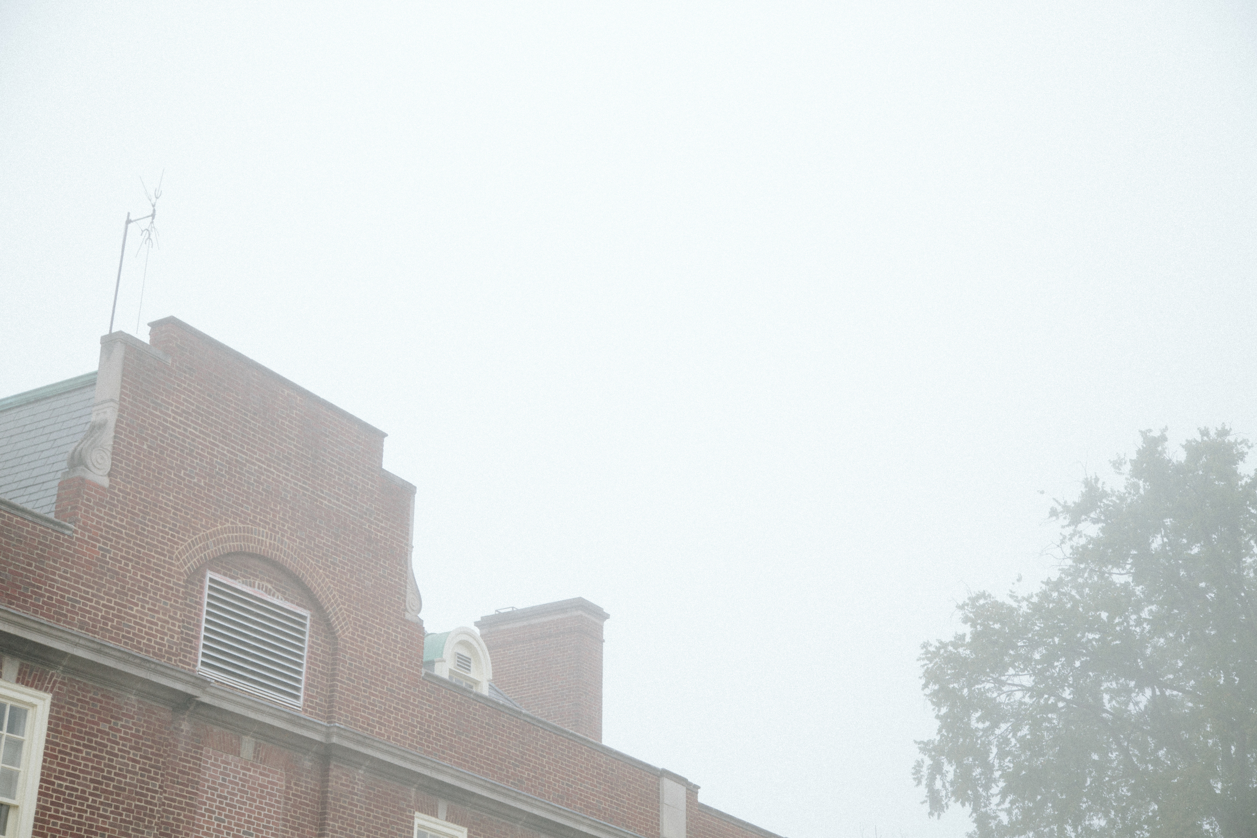 266 // 365 Foggy walk to work
