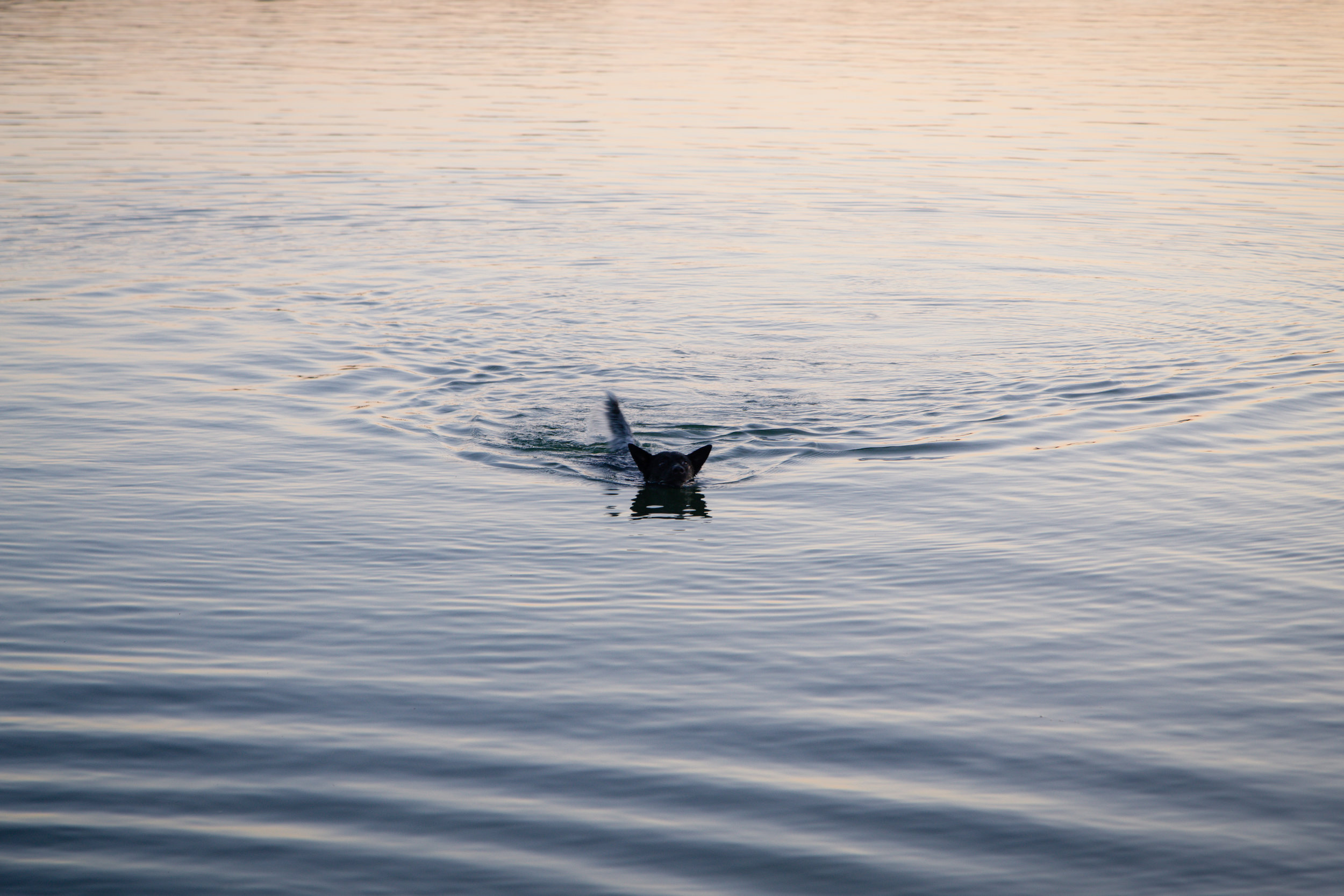 215 // 366 Onyx takes on the lake