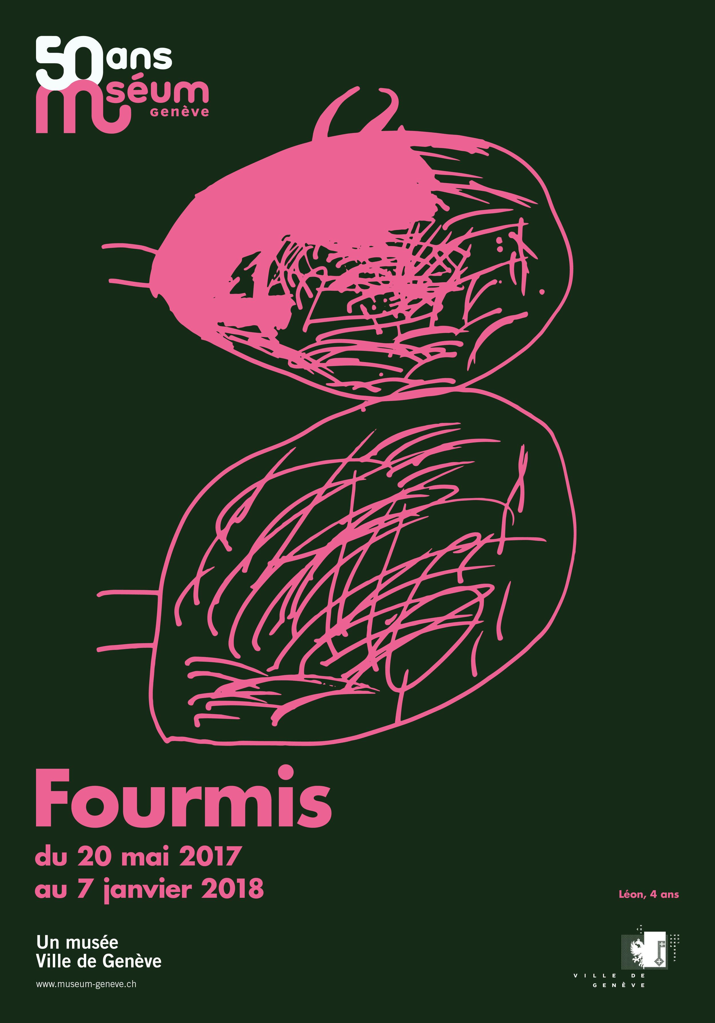 Fourmis2_F4.jpg