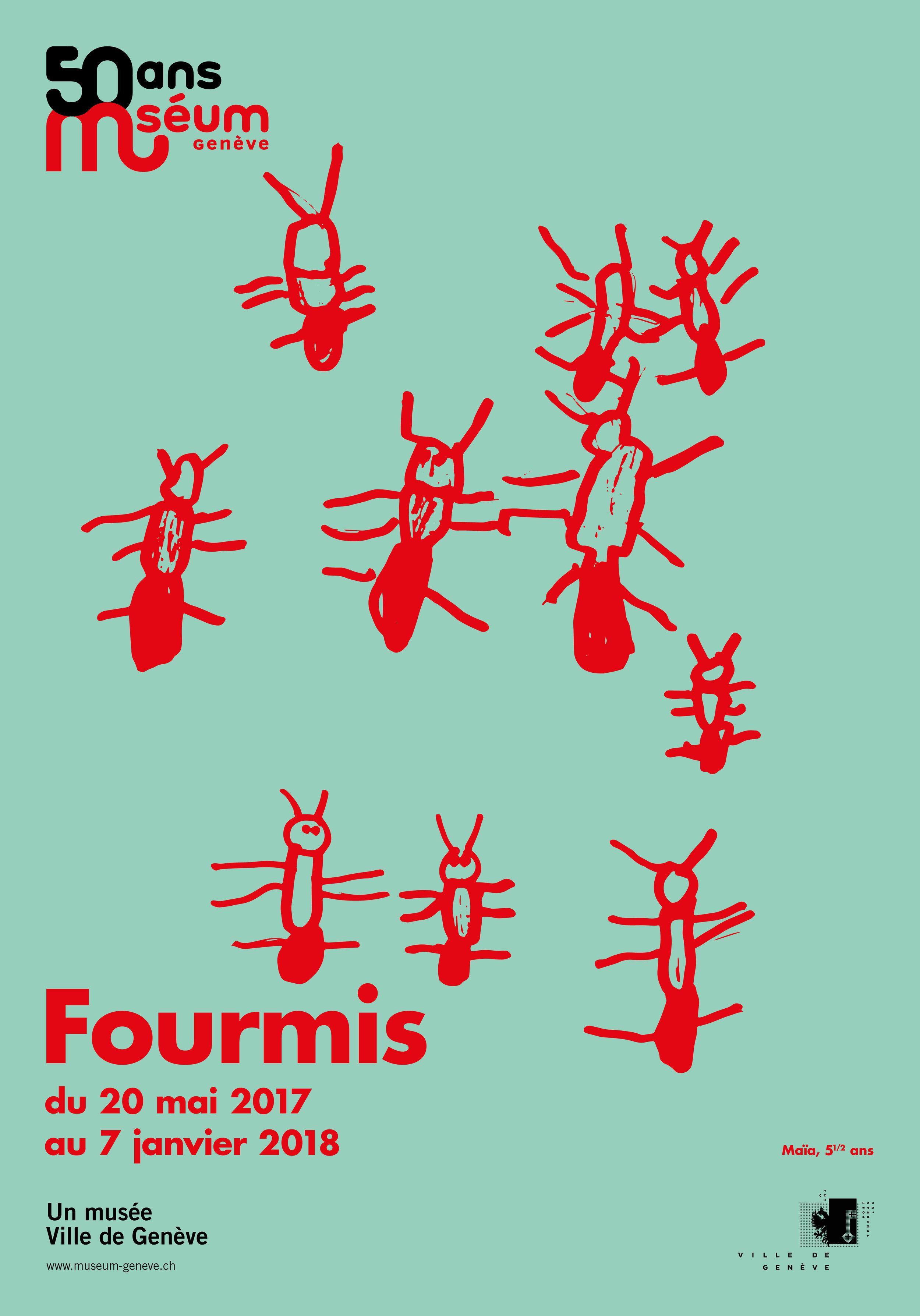 Fourmis3_F4.jpg