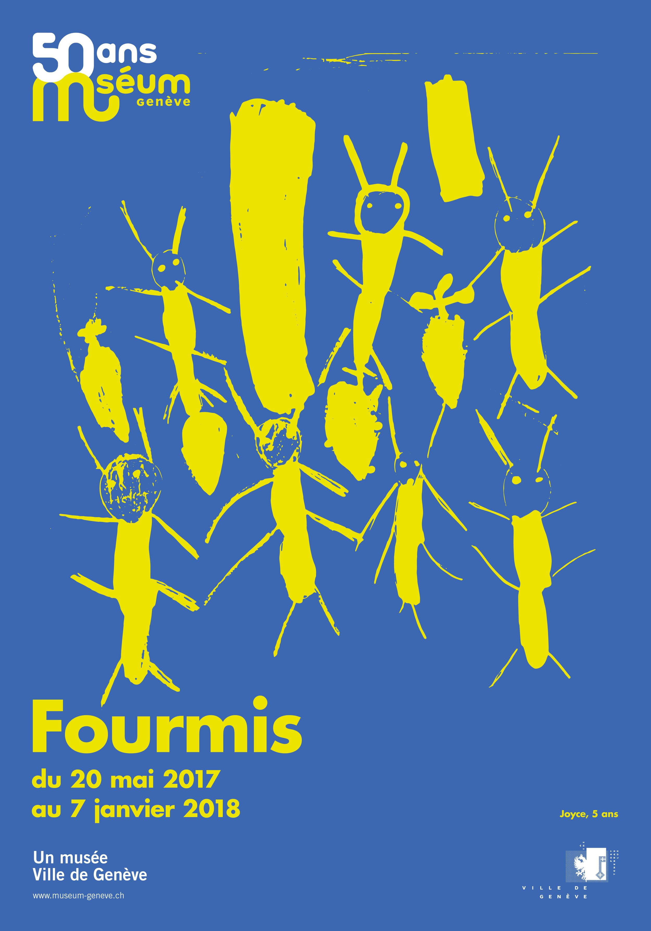 Fourmis6_F4.jpg