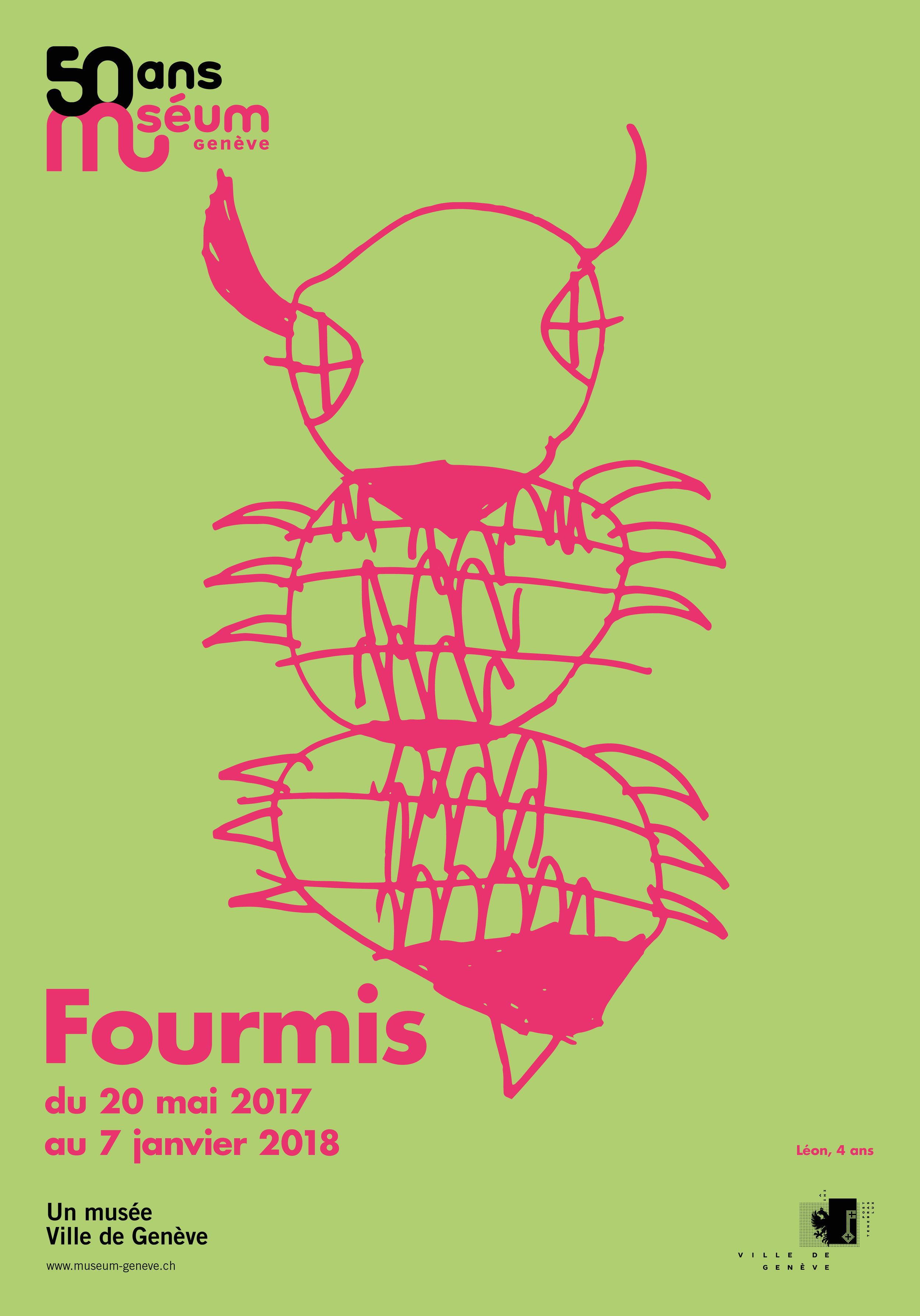 Fourmis8_F4.jpg