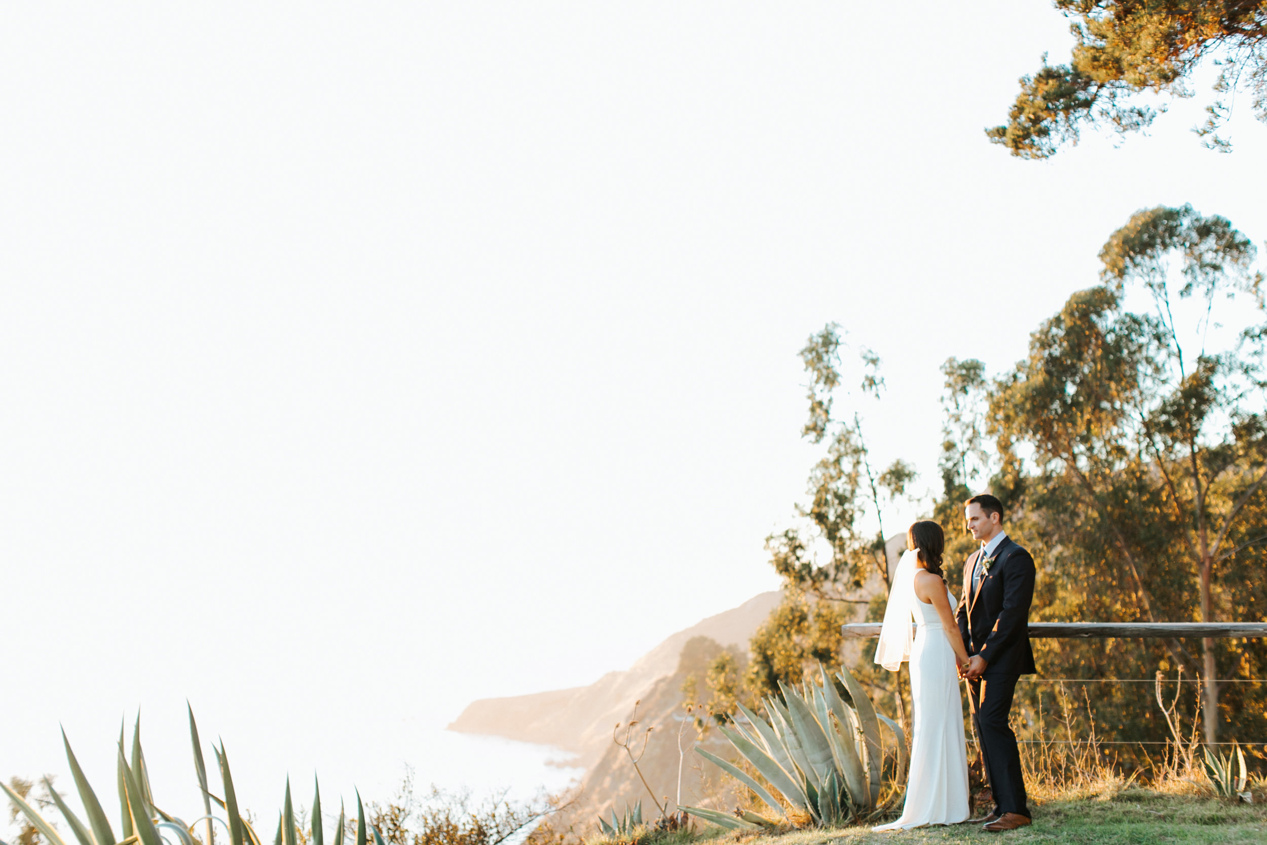 big_sur_wedding_margaret_austin_photography_6