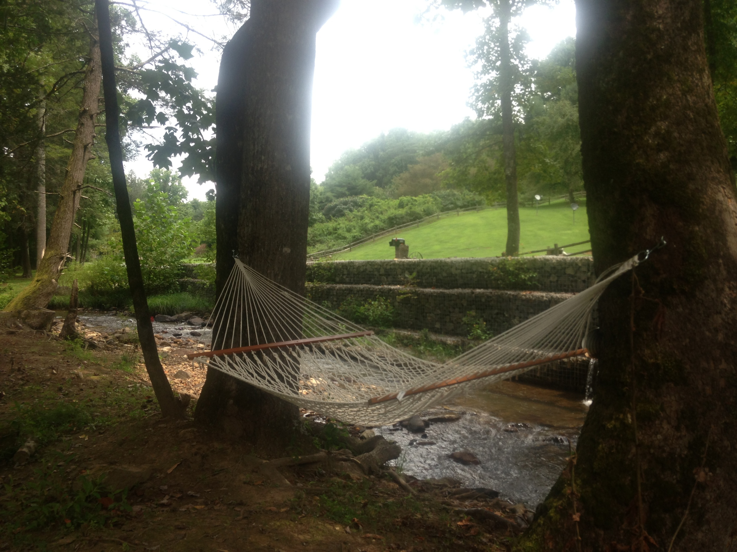 Hammock down by the creek