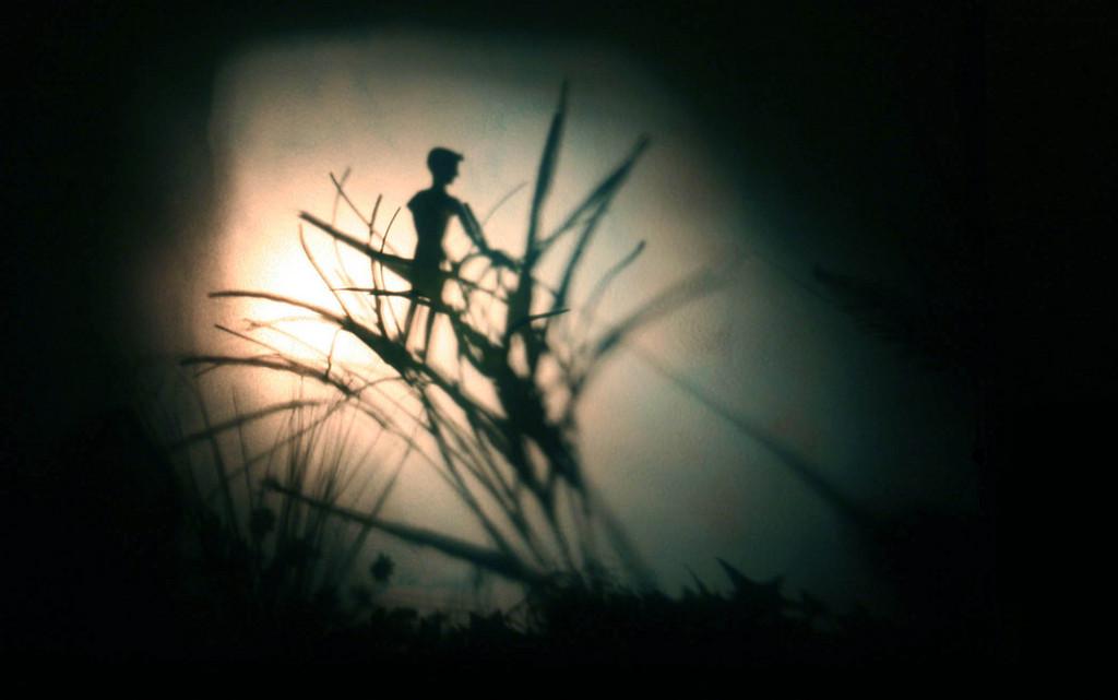 reptile-shadow-boy-hides__zoom.jpg