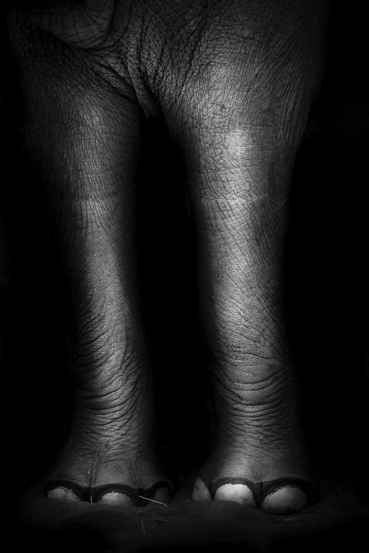 Jeffrey Dowell Photography _ blog -8622.jpg