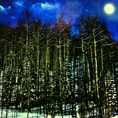 A Forest Moon.JPG